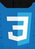 logo_CSS3_h100